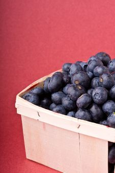 Free Blueberry Royalty Free Stock Photography - 9960567