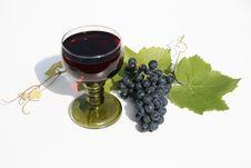 Free Wine Stock Photo - 9963010
