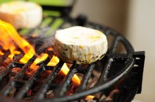 Free Grilled Food On The Plate Royalty Free Stock Photos - 9964318