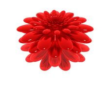 Free Red Flower Stock Photos - 9966153