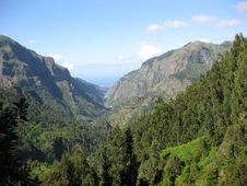 Free Mountains Of Madeira Royalty Free Stock Images - 9969239