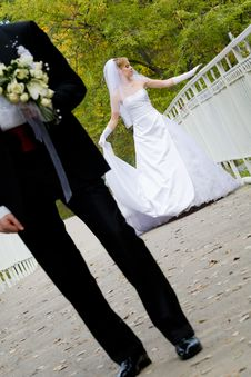 Free Marriage Royalty Free Stock Image - 9969356
