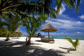 Free Tropical Sandy Beach With Palm Trees Stock Images - 9971054
