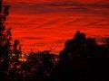 Free Burning Sky. Stock Image - 9976581