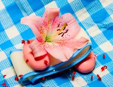 Soap And Flower On Towel Stock Images
