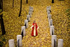 Free Lady In Autumn Forest Royalty Free Stock Photo - 9974395