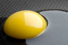 Free Broken Egg Stock Photography - 9975492
