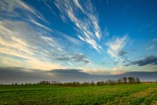 Free Sunset Over Green Crops Royalty Free Stock Image - 9975596