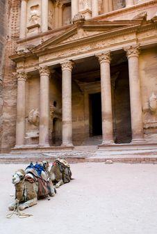 Free Petra Royalty Free Stock Photo - 9976155