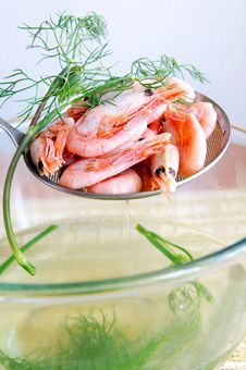 Free Boiled Shrimps With Dill Royalty Free Stock Photo - 9978205