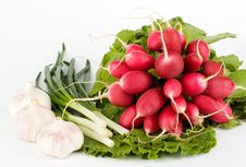 Free Spring Onions, Garlic, Lettuce And Radish Stock Image - 9979841