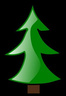Free Christmas Tree, Green, Leaf, Tree Stock Image - 99752011