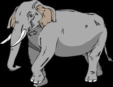 Free Elephant, Elephants And Mammoths, Indian Elephant, Mammal Stock Photos - 99752493