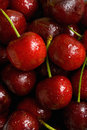 Free Red Cherries Royalty Free Stock Image - 9982136