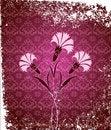 Free Grungy Ottoman Design Royalty Free Stock Image - 9989836