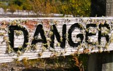 Free Wooden Danger Sign Covered By Moss Royalty Free Stock Photos - 9981688