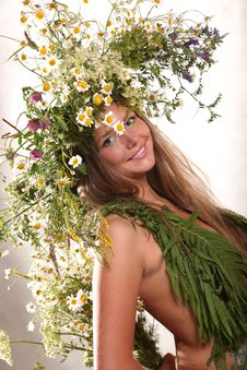 Free Forest Fairy Girl Royalty Free Stock Images - 9983989