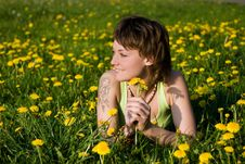 Free Dandelions Glade Royalty Free Stock Image - 9984916