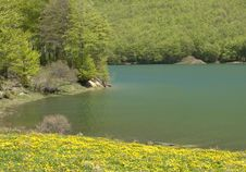 Free Mountain Landscape Stock Photo - 9985950