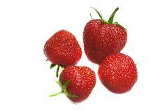 Free Four Strawberry On A White Royalty Free Stock Photo - 9987675