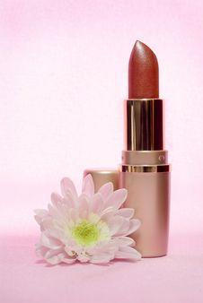 Lipstick And Chrysanthemum Royalty Free Stock Photo