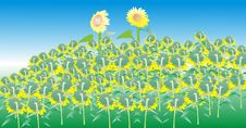 Free Hand-painted Sunflower Royalty Free Stock Photos - 9988818