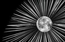 Free Raster Moon Illustration Stock Photos - 9989573