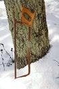 Free Old Saw Stock Photos - 9990223