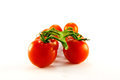 Free Tomatoes On The Vine Royalty Free Stock Photo - 9992515