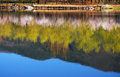 Free Water Reflection Of The Forests Stock Image - 9995541