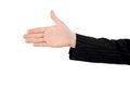 Free Business Handshake Royalty Free Stock Photo - 9998185