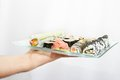 Free Japanese Sushi Royalty Free Stock Image - 9998826