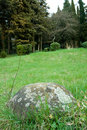 Free Stone In Forest Stock Photo - 9999830