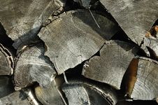 Free Wood Texture Royalty Free Stock Image - 9991006