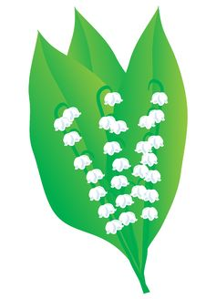 Free A Bouquet Of Lily Of The Valley Royalty Free Stock Photography - 9991047