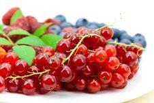 Free Fresh Ripe Summer Berries Background Stock Photos - 9991243