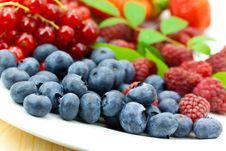 Free Fresh Ripe Summer Berries Background Royalty Free Stock Photos - 9991288