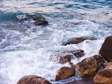 Free Sea Royalty Free Stock Image - 9991506