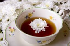Free Tea Royalty Free Stock Images - 9994219