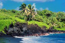 Free Tropical Beach Stock Photo - 9997000