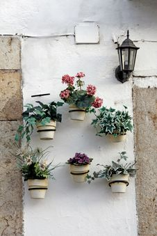 Several Flower Pots Royalty Free Stock Photo
